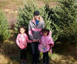 Christmas Tree Farm Packages In Boone Nc by Christmas Tree Farms In Burlington Nc Best Images Collections Hd
