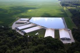 Stoney Creek Pumpkin Patch Ohio by Spills Of Pig Waste Kill Hundreds Of Thousands Of Fish In Illinois