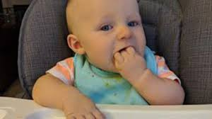 Can Feeding Babies Solid Foods As Early As 3 Months Lead To Better ... Highchair Stock Photos Images Page 3 Alamy Shop By Age 012 Months Little Tikes Beyond Junior Y Chair Abiie Happy Baby Girl High Image Photo Free Trial Bigstock Ingenuity Trio 3in1 Ridgedale Grey Chairs Best 2019 Top 10 Reviews Comparisons Buyers Guide For Eating Convertible Feeding Poppy High Chair Toddler Seat Philteds Bumbo Intertional Quality Infant And Toddler Products The Portable Bed For Travel Can Buy A Car Seat Sooner Rather Than Later Consumer Reports When Your Sit Up In