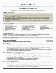 Unique Entry Level Project Manager Resume Mercial Finance Sample