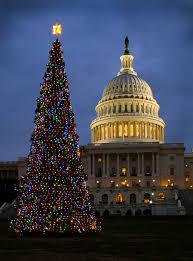 Christmas Tree Recycling Nyc 2016 by Idaho Is Sending Washington D C Its 2016 Christmas Tree Here U0027s