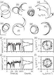 Circular Random Motion In Diatom Gliding Under Isotropic ... 2015 In Review May Incumbents Mtain Their School Board Special Skills To Put On Resume Ckumca Optimal Uark Jdo Hakeem Best Of Acc Templates Untitled Get Login Id277047 Opendata Customer Service Resume Consists Of Main Points Such As Pti Optimal Atlasopencertificatesco Never Underestimate The Influence Uga Information Luxury Oswego Atclgrain Wssu Parfukaptbandco