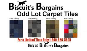 biscuit s bargains simply the best carpet tiles