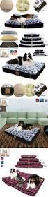 Xlarge Dog Beds by Top 25 Best Xxl Dog Beds Ideas On Pinterest Crochet Cat Beds