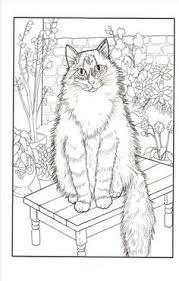 Mori No Oukoku Toshiyuki Fukuda Nurie Coloring Book