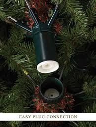 Nordmann Fir Christmas Tree Nj by Nantucket Blue Spruce Christmas Tree Balsam Hill