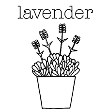 Lavender Flower In Pottery Coloring Pages