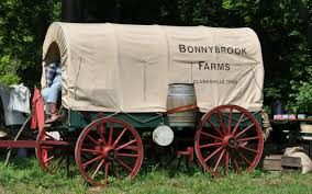 Boone Hall Pumpkin Patch And Corn Maze by Bonnybrook Farms