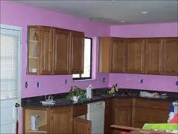 kitchen kitchen paint colors with light oak cabinets best ideas