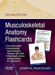 Anatomy Coloring Book Flash Cards Musculoskeletal Flashcards Nd Edition Learn