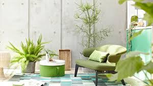 das sind die 10 besten pflanzen für ein gutes raumklima