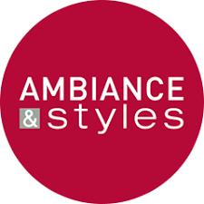 le ambiance et style le réseau ambiance styles s implante en périphérie de bordeaux