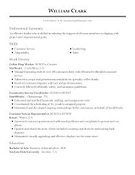 Professional Summary Sample For Resume Examples Statements Templates ...