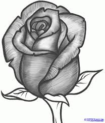 Best 25 Rose Drawing Simple Ideas On Pinterest