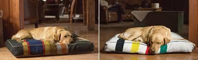Tempur Pedic Dog Bed by Orvis Dog Bed Korrectkritterscom