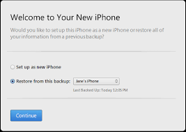 iOS Device Backup Reset and Restore – Ting Help Got a question