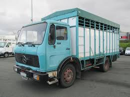MERCEDES-BENZ 1013 Livestock Trucks For Sale, Cattle Truck From ... Welcome To Ranch Trucks Trailers Cattle Bodery Wilson Livestock Pinterest Cars New Ud For Sale Vcv Rockhampton Central Queensland The Trucknet Uk Drivers Roundtable View Topic Gilders Pin By Larry Murray On Cattle Trucks Mini For Suzuki Mitsubishi Daihatsu Subaru Mazda 12002 Road Train Highway Replicas Transport Vehicles Horsezone Page 1 Newark Scanias Geary Operation Arod Redneck Lewis Family Farm Deraad Trucking
