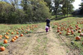 Pumpkin Festival Pageant Milton Wv by Over The Rainbow Gritts Farm Photo Heavy