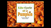 Pumpkin Pumpkin By Jeanne Titherington by Hd Pumpkin Pumpkin By Jeanne Titherington Story Only Youtube