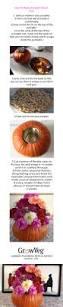 Milk Farm Dixon Pumpkin Patch by 185 Best Thanksgiving And Pumpkin Pie Images On Pinterest