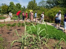 Medicinal garden opens at U M Matthaei Botanical Gardens
