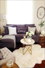 Charming Cute Apartment Decor Nice Decorated Apartments Modest