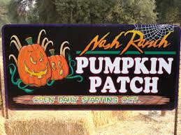Sacramento Pumpkin Patch With Petting Zoo by East Valley Times