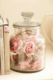 Pink Roses In Jar