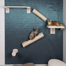 katzenzimmer ideen für die einrichtung
