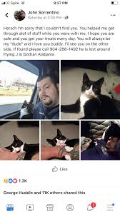 HELP FIND THIS CAT! Trucker Missing His Buddy. Dothan, Al Flying J ... 2018 Annual Cvention Alabama Trucking Association Jordan Love Truck Jesse Contes Portfolio Interactive Map Iowa 80 Truckstop An Ode To Trucks Stops An Rv Howto For Staying At Them Girl College Kids Love Ajian A Restaurant With Offensive Name Alcom Loves Stop Birmingham Al Foto And Descripstions Heres What Its Like To Be Woman Truck Driver Jubitz Travel Center Fleet Services Portland Or Food Eugenes Hot Chicken Found Letter Li88y Inc