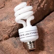 exo terra reptile uvb200 high output uvb bulb reptile lighting