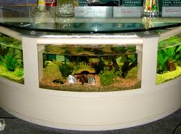 Fish Aquarium Home Design - Nurani.org 60 Gallon Marine Fish Tank Aquarium Design Aquariums And Lovable Cool Tanks For Bedrooms And Also Unique Ideas Your In Home 1000 Rousing Decoration Channel Designsfor Charm Designs Edepremcom As Wells Uncategories Homes Kitchen Island Tanks Designs In Homes Design Feng Shui Living Room Peenmediacom Ushaped Divider Ocean State Aquatics 40 2017 Creative Interior Wastafel