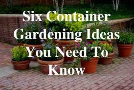 Six Container Gardening Ideas You Need To Know