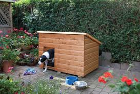 Wooden Large Dog Kennels - Duncombe Sawmill, Local And UK Delivery ... Whosale Custom Logo Large Outdoor Durable Dog Run Kennel Backyard Kennels Suppliers Homestead Supplier Sheds Of Daytona Greenhouses Runs Youtube Amazoncom Lucky Uptown Welded Wire 6hwx4l How High Should My Chicken Run Fence Be Backyard Chickens Ancient Pathways Survival School Llc Diy House Plans Deck Options Refuge Forums Animal Shelters The Barn Raiser In Residential Industrial Fencing Company