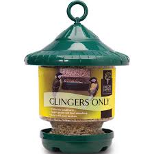 Clingers only feeder green British Wild Bird Food and Habitat