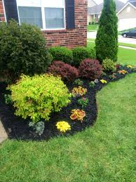 Beautiful flowerbed Black Mulch made a big difference
