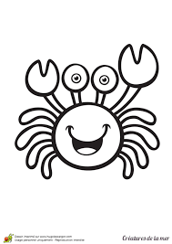 Coloriage Ermite De Crabe In Coloriage Les Créatures De La Mer Le