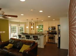Small Kitchen Ideas With Leather Sofa For Formal Family Room