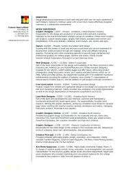 Amazing Resumes Examples Graphic Resume Templates Online Or Design Sample Ideas