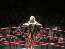 Curtain Call Wwe Finisher by Goldust Wikipedia