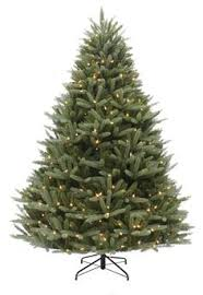 8ft Christmas Tree Ebay by 7ft Bayberry Spruce Feel Real Artificial Christmas Tree