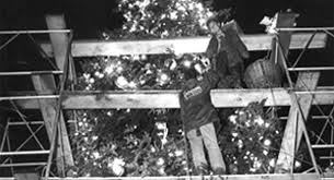 Ge Franklin Fraser Fir Christmas Tree by Event History U0026 Timeline National Christmas Tree Lighting
