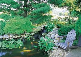 Aquascape Patio Pond Canada by Build A Backyard Fish Pond Without Going Belly Up