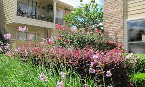 4 Bedroom Houses For Rent In Houston Tx by South Houston Tx Apartments For Rent The Alcove Apartment Homes