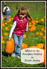 Pumpkin Farms In Georgia by Best 25 Pumpkin Picking Nj Ideas On Pinterest Local Pumpkin