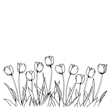 Unbelievable Pin Printable Tulip Coloring Page With Pages And Poplar