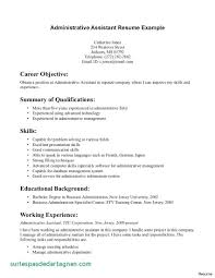 Resume Profile Examples For Administrative Assistant 0 Entry Level Beautiful Of Objective Statement Ent