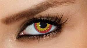Theatrical Contacts Prescription by Red Wolf Fx Contact Lenses Premium Cls Pair Vampfangs