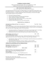 Resume Examples Banking Industry Personal Banker Professional Experience