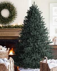 Balsam Christmas Tree Care by Blue Spruce Christmas Tree Balsam Hill